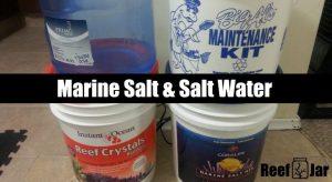 marine salt saltwater